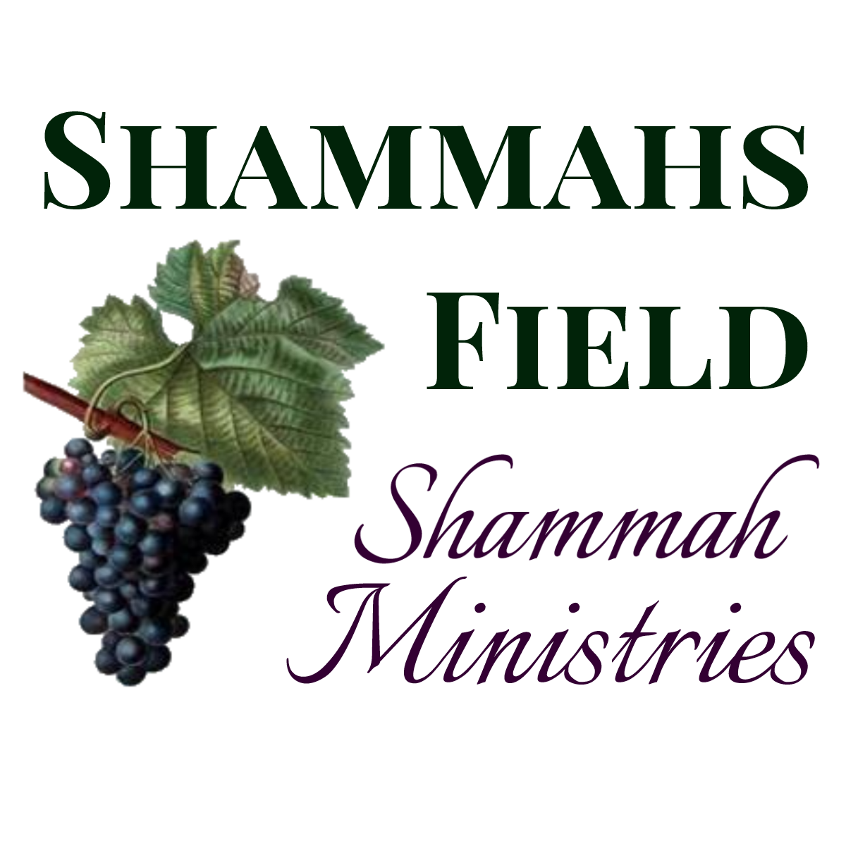 Shammahs Field