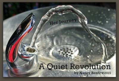 A Quiet Revolution - IS