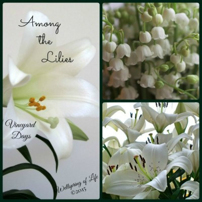 Among the Lilies collage