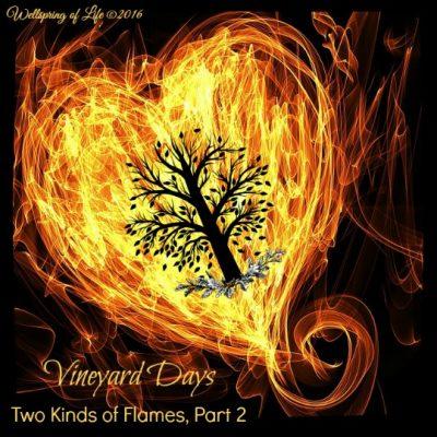 Flame heart II - Pixabay public domain