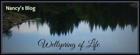 Wellspring of Life Blog