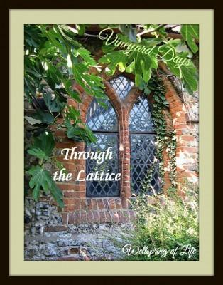 Through the Lattice medium_3848815160