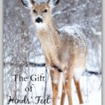 The Gift of Hinds' Feet