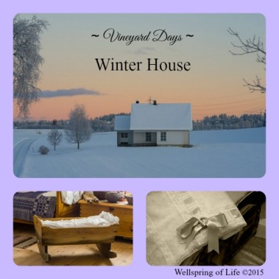 VD Winter House PicMonkey Collage