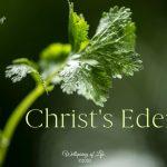 Christ's Eden