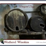 Vineyard Days – Weathered Wineskins