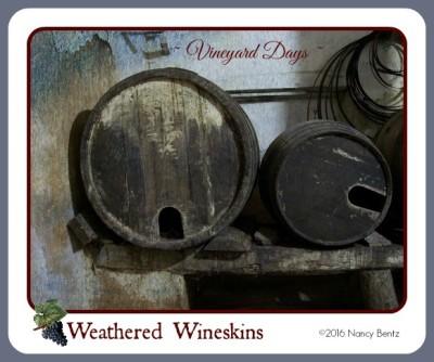 Weathered Wineskins - morgueFile free photo 2007_Saggio danza 017