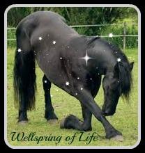 Kneeling horse III